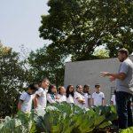Organização Cidades Sem Fome, de São Paulo (SP), foi premiada no 10º Volkswagen na Comunidade, em 2017, com o projeto Hortas Escolares.
