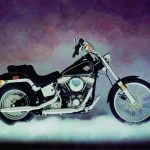 1984 - Softail.